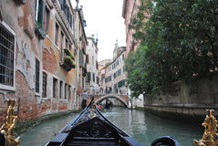 Venedig gondolritt Arkivbild