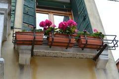Venedig-Haus verziert mit den Blumenpelargonien-Plastikvasen aufgeworfen auf alten Balkonen an einem sonnigen Frühlingstag lizenzfreie stockfotografie