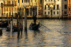 Venedig Italien Arkivfoton