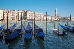 VENEDIG ITALIEN - MARS 13, 2014: Stor kanal och gondoler för kyrkliga Santa Maria della Salute Royaltyfri Fotografi