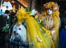Venedig-Karnevalskostüm und -hund lizenzfreie stockfotos