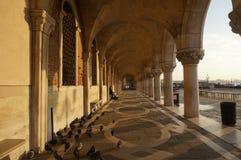 Venedig kolonnad Royaltyfri Bild