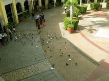 Venedig-Marktplatz, McKinley-Hügel, Taguig, Philippinen Lizenzfreies Stockfoto