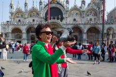 Venedig - Oktober 04: Den okända asiatiska turisten har gyckel med duvor på piazza San Marco på Oktober 04, 2017 i Venedig Fotografering för Bildbyråer