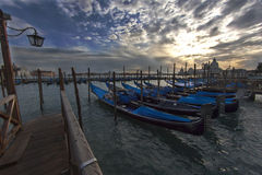 Venedig sikt för Santa Maria della Salute solnedgång med rad av gondolfartyg Arkivbilder