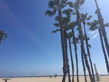Venedig strand Cali royaltyfri foto