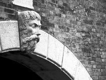 Venedig: vattenkastare royaltyfri foto