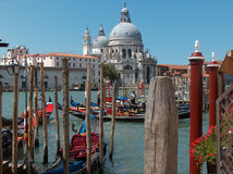 Venedig-Zellen Lizenzfreie Stockfotos