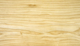 Veneer maple. Beautiful pattern of flat veneer yellow maple Stock Image