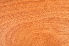 Veneer wood panel texture, brown plywood wooden formica board royalty free stock photo