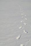 Venendo lontano dentro dalle tracce della neve di essere umano Fotografie Stock Libere da Diritti