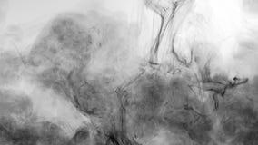 Veneno fluido da poluição do movimento da pintura do fluxo de tinta preta filme