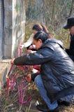 Veneración del antepasado en China Foto de archivo libre de regalías
