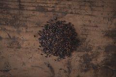 Venere italian black rice Royalty Free Stock Photos