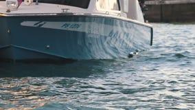 Venetië Italië, 11-11-2018: Het vastgelegde politieboot drijven stock videobeelden