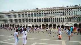 Venetië, Italië, Juni 2017: Vele toeristen lopen op het reusachtige St Teken` s Vierkant in Venetië De duiven omcirkelen rond stock footage