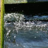 Venetië, water en algen op de kust stock afbeelding