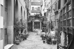 Venetië in zwart-wit royalty-vrije stock fotografie