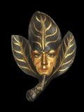 Venetiaans Gouden Masker Stock Foto's