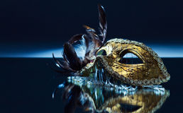 Venetiaans masker met veer Royalty-vrije Stock Foto