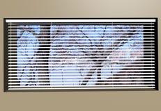 Venetian Blinds 3d max Royalty Free Stock Photo