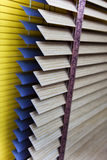 Venetian blinds Stock Photography
