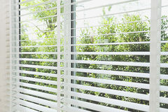 Venetian blinds. By the window stock photography