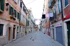 Venetian Calle Royaltyfri Fotografi