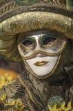 Venetian carnival-2013 Stock Photography