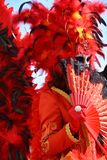 Venetian carnival, elegant mask and feathers, Venice, Italy Royalty Free Stock Images