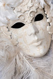 Venetian carnival mask close up. Royalty Free Stock Image