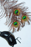 Venetian carnival mask and peacock feathers Royalty Free Stock Image