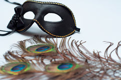 Venetian carnival mask and peacock feathers Stock Image