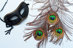 Venetian carnival mask and peacock feathers Royalty Free Stock Photos