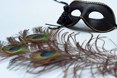 Venetian carnival mask and peacock feathers Royalty Free Stock Images