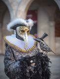 Venetian carnival masks Royalty Free Stock Photos