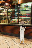Venetian Deli Dog Stock Photos