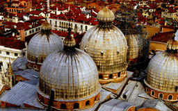 Venetian domes. In the centre of venice viewed from a tower Royalty Free Stock Images