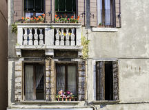 Venetian fönster med blommor Arkivbilder