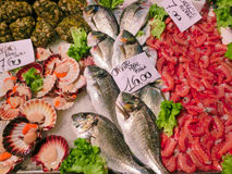 Venetian fish market Stock Photos