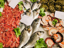 Venetian fish market Royalty Free Stock Photo