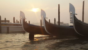 Venetian gondolas tied near the pier on San Marco square at sunrise. Timelapse stock video