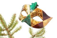venetian karnevalmaskering Royaltyfri Bild