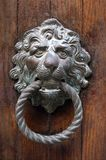 Venetian lion head door knob Royalty Free Stock Photography