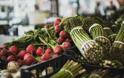 Venetian Market Radishes and Asparagus Stalks stock photography