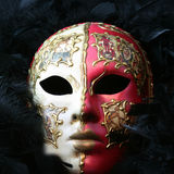 Venetian Mask. Hand painted Venetian Mask against black feathers royalty free stock images
