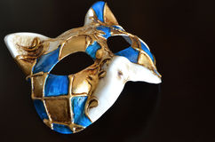 Venetian mask of a cat muzzle Royalty Free Stock Photography