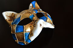 Venetian mask of a cat muzzle Stock Photos