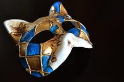 Venetian mask of a cat muzzle Stock Photos