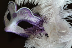Venetian mask with feathers Royalty Free Stock Photography
